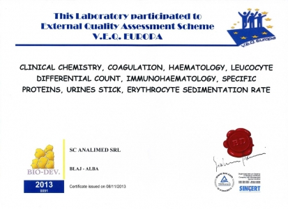 Certificat control extern 2013
